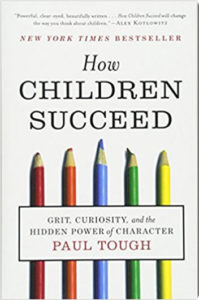 Mental Health book How Children Succeed